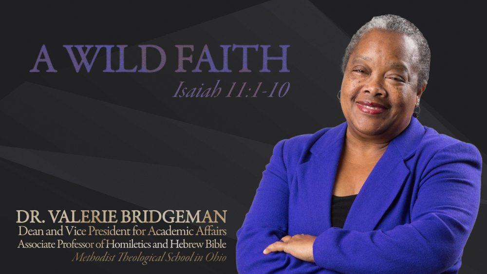 A Wild Faith Image